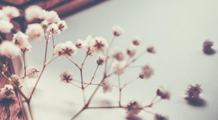 A Valentine's Day Lesson from Jane Austen